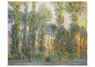 Claude Monet (1840-1926)  -  Les Peupliers À Giverny - Postcard -  A13474-1