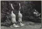 Rolf Neeser (1959)  -  Kopfstand - Postcard -  B0622-1