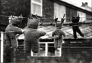 David Montford  -  Teddy bears on wash - Postcard -  B1721-1